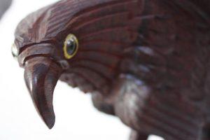 eagles5_l